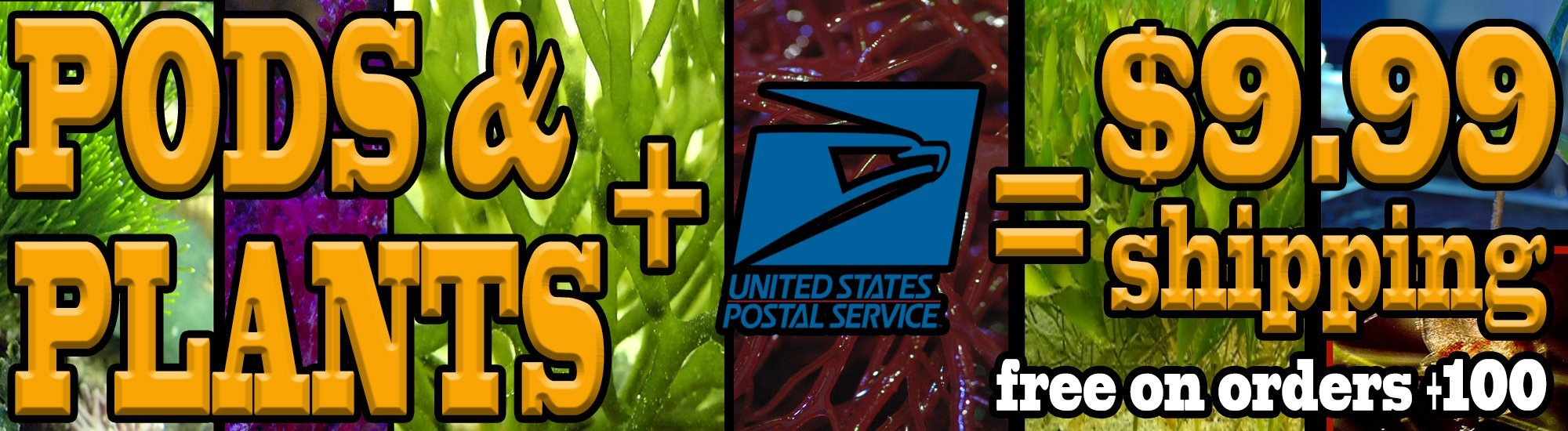 [Image: Pods-Plants-USPS-shipping.jpg]